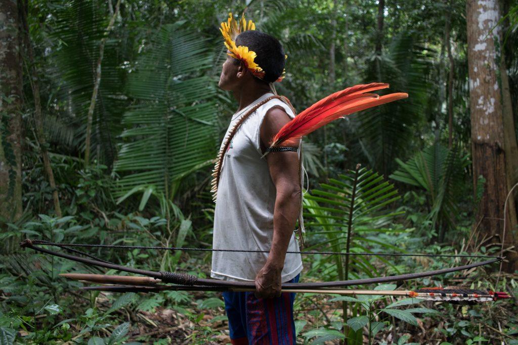 261959_Brazil - illegal land seizures in Indigenous territories
